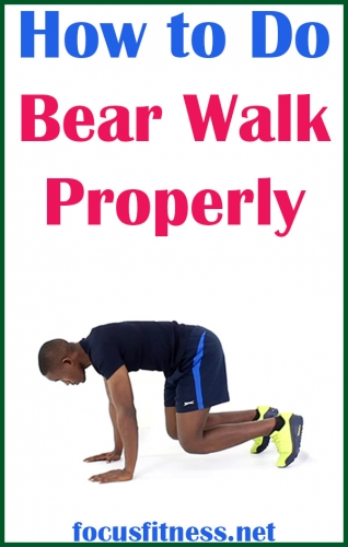 If you don't know how to do bear walks, this article will show you how to get the most out of this exercise and the mistakes to avoid #bear #walk #exercise #focusfitness