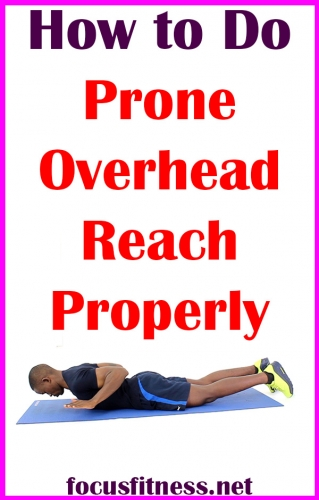 In this article, you will discover how to perform the prone overhead reach in order to build your upper back muscles without weights #prone #overhead #reach #focusfitness
