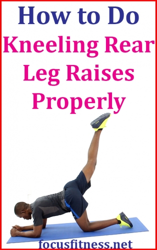 If you want to strengthen your core and tone your glutes, this exercise will show you how to perform kneeling rear leg raises properly #kneeling #rear #leg #raises #focusfitness