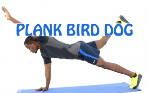 How to do Plank Bird Dog