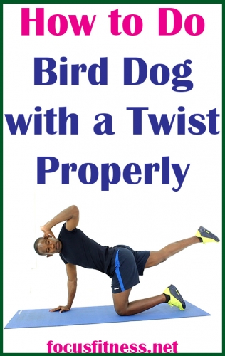 In this article, I will show you how to perform bird dog with a twist exercise to activate your abs and strengthen your core #bird #dog #twist #exercise #focusfitness